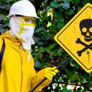 Des pesticides jusqu'à 1000 fois plus toxiques que prévu !