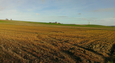 Les champs roux